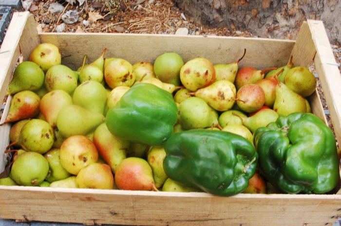 If you're lucky, farmer's will often give you their fruits and veggies that they can't sell!