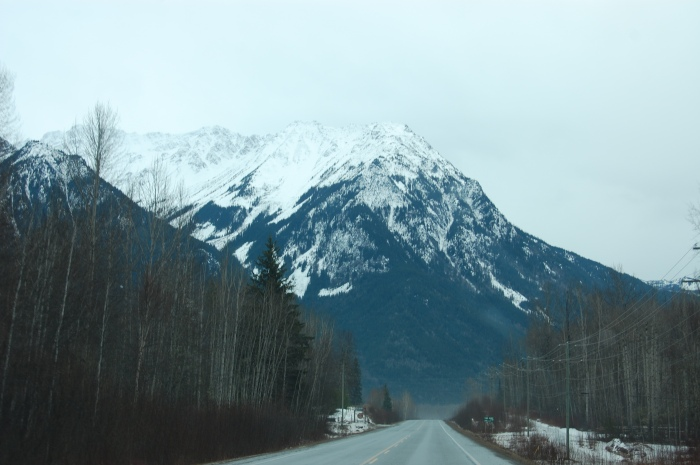 On route to Prince Rupert